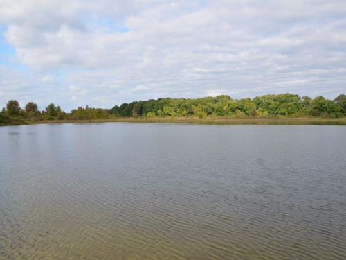 40-Acre Lakefront Parcel Noble : Bronson : Branch County : Michigan