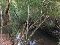 The Preserve At Barber Creek : Statham : Oconee County : Georgia