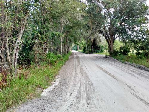64.6 Acres In Lake City, Florida : Lake City : Columbia County : Florida