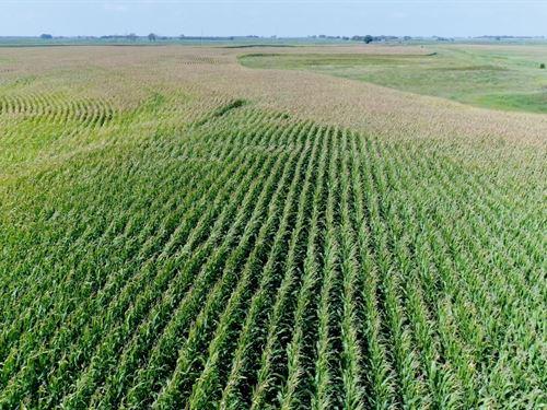 153 Acres In Sanborn County Sd : Letcher : Sanborn County : South Dakota