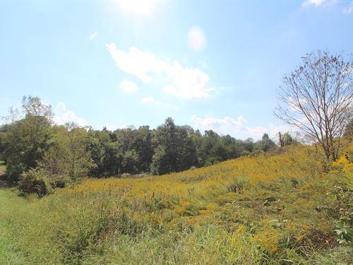Sr 668, 21 Acres : Somerset : Perry County : Ohio