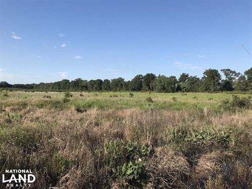 60 Acres Hunting Land : Beedeville : Jackson County : Arkansas