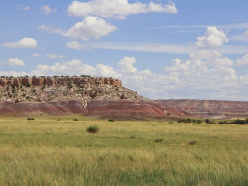 Secluded Northern Arizona Ranch : Saint Johns : Apache County : Arizona