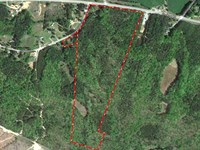 40.78 Acres in Chester, Chester Co : Chester : Chester County : South Carolina