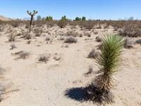 2.28 Acres Exc California Hi-Desert : Lucerne Valley : San Bernardino County : California