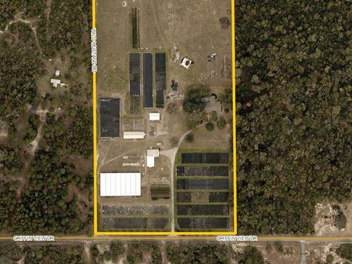 Griffin View Nursery : Lady Lake : Lake County : Florida