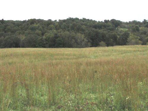 Tr 202, 16 Acres : Corning : Perry County : Ohio
