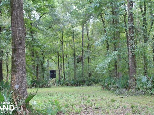 Concordia Parish Hunting Paradise : Wildsville : Concordia Parish : Louisiana