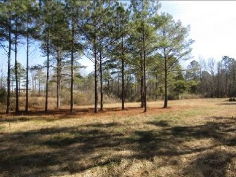 9 Acres With A Camp In Leake County