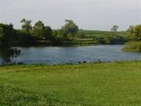 175 Acres M/L Land : Nortonville : Jefferson County : Kansas