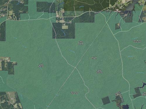 Land Outside Hemphill Tx, Toledo : Hemphill : Sabine County : Texas