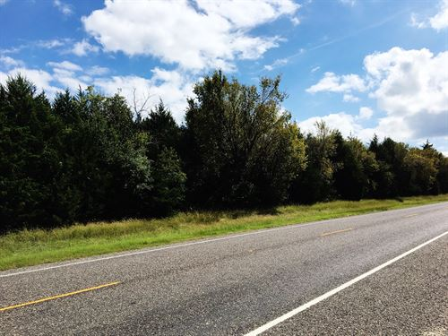 Fannin County TX Heavily Wooded : Ravenna : Fannin County : Texas