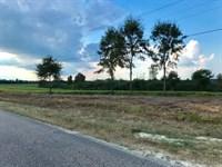 5 Acres Community Water Opp : Opp : Covington County : Alabama