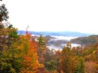 Residential Lots Mtn & Lake Views : Topton : Swain County : North Carolina
