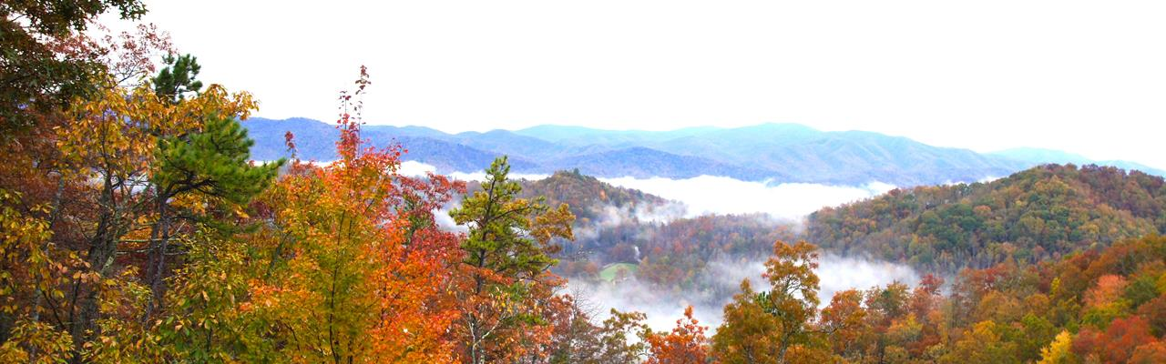 Residential Lots Mtn & Lake Views : Topton : Swain County : North Carolina