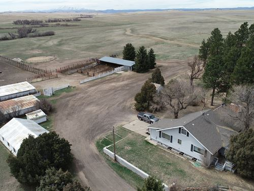 Antelope Creek Ranch : Franktown : Douglas County : Colorado