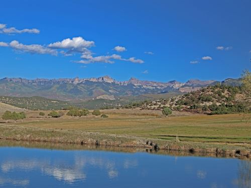 Pleasant Springs Ranch : Ridgway : Ouray County : Colorado