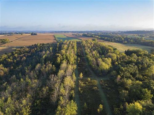 78 Acres Mol For Sale Near Mayvill : Mayville : Dodge County : Wisconsin