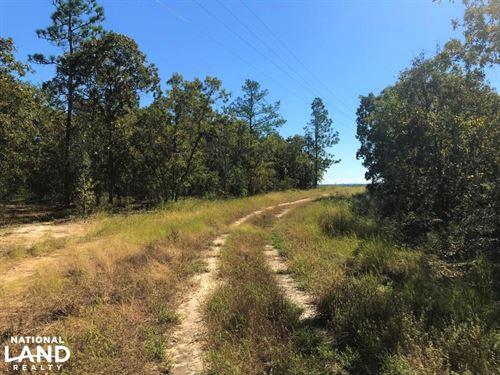 Edisto Church Rural Home Site : Williston : Aiken County : South Carolina
