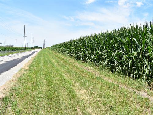 Champaign County Farmland Auction : Champaign : Illinois