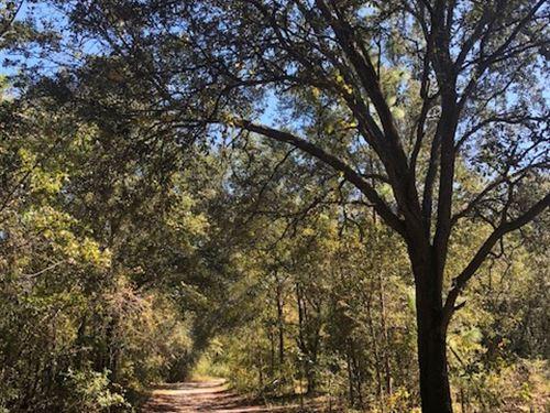 Groveland Oaks : Pembroke : Bulloch County : Georgia
