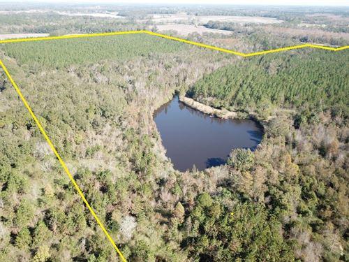 113 Acres W Timberland & Ponds : Slocomb : Geneva County : Alabama