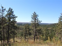 Three Oak Ranch : Springview : Keya Paha County : Nebraska
