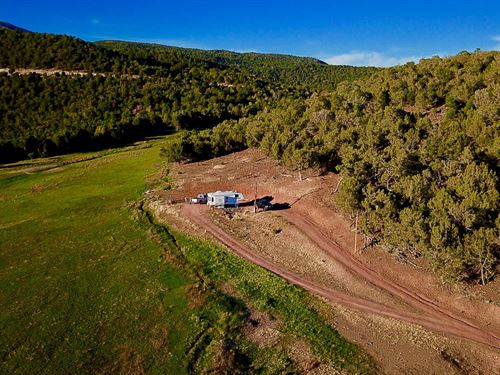 Western Colorado Private Mountain : Cedaredge : Delta County : Colorado