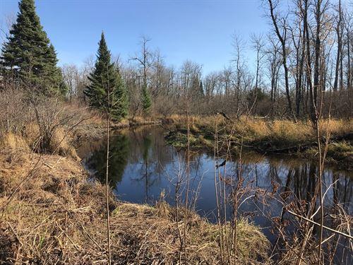 Potlatch Hunting Acreage, Creek : Zim : Saint Louis County : Minnesota