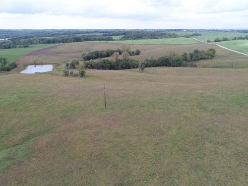 62 Ac, Income From Crp, Hunting : Ridgeway : Harrison County : Missouri