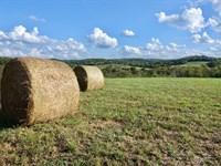Ozark County Missouri Farm : Wasola : Ozark County : Missouri