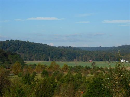 6.28 Acres in Augusta, WV : Augusta : Hampshire County : West Virginia