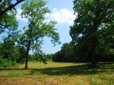 14.39 On Shaw Rd, Walnut Grove Comm : Woodruff : Spartanburg County : South Carolina
