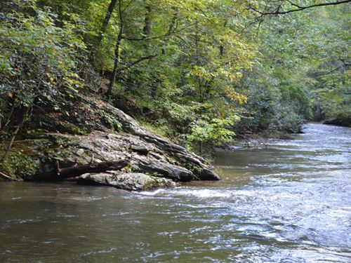 9.1 Acre Tract Little River : Sparta : Alleghany County : North Carolina