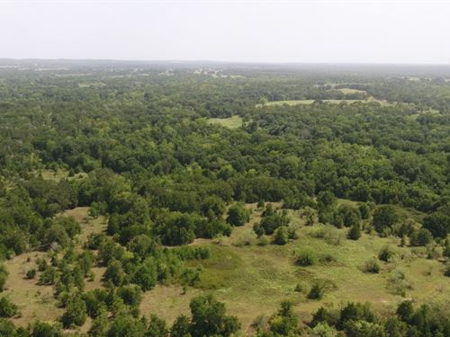 Nice, Small Acreage For Hunting : Milano : Milam County : Texas