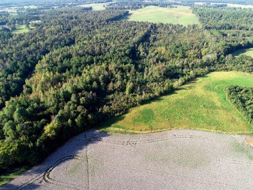 41-002 Cloverdale Property : Florence : Lauderdale County : Alabama