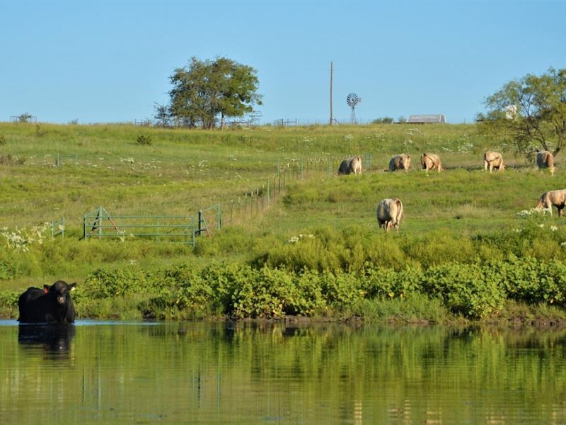 River Ranch at Hico : Hico : Erath County : Texas