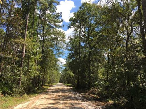 5.69 Acres Land For Sale in Kingsl : Kingsland : Camden County : Georgia
