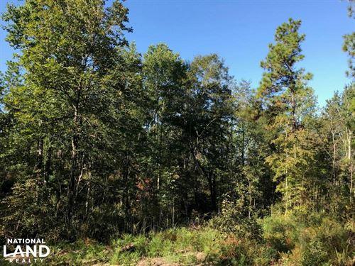 Sandwood Development Tract 6 : Purvis : Lamar County : Mississippi