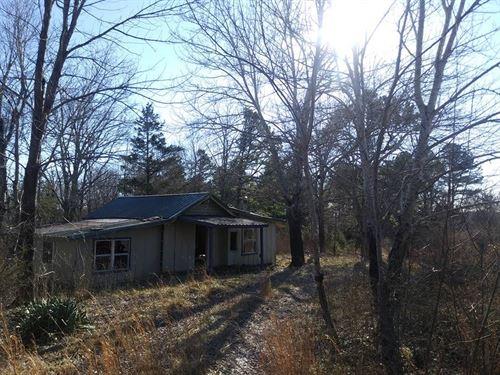 Beautiful Level Acreage Mountain : Shirley : Van Buren County : Arkansas