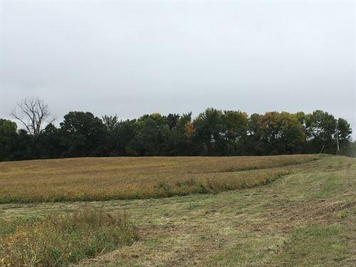 40 Acres Farm, Excellent Spot to : Hamilton : Caldwell County : Missouri