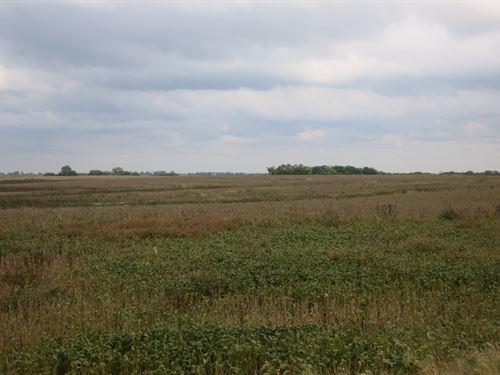 199 Acres Northern Harrison County : Eagleville : Harrison County : Missouri