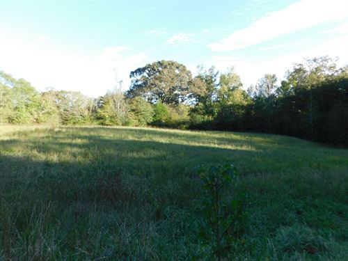Farm Tn Fencing, Timber, Horses : Adamsville : Hardin County : Tennessee