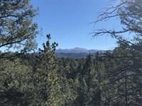 20 Acres in Florissant, CO : Florissant : Teller County : Colorado