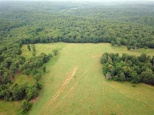 Great Combination Hunting And Past : Stover : Morgan County : Missouri