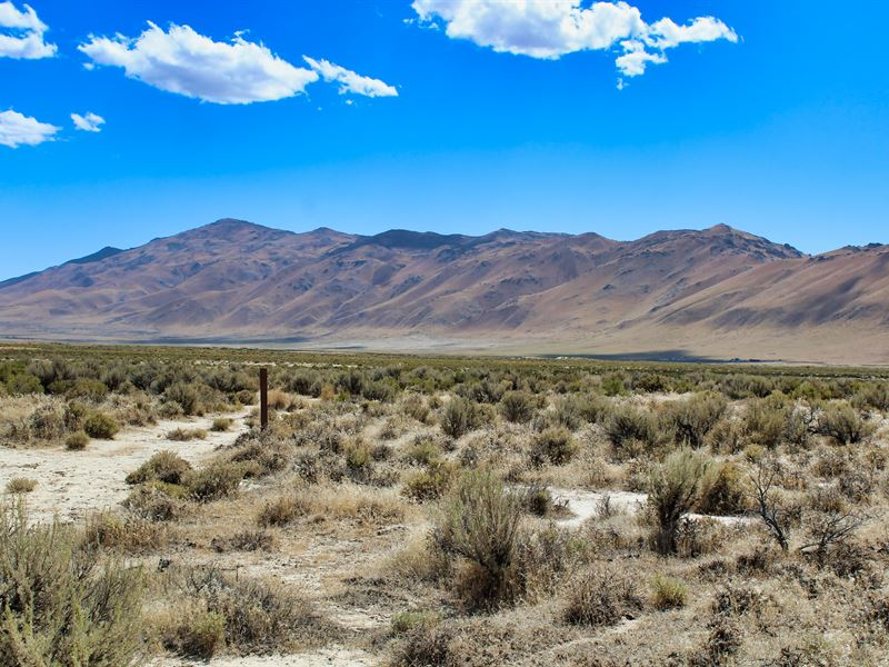 Military Discount Ranch Land : Herlong : Lassen County : California