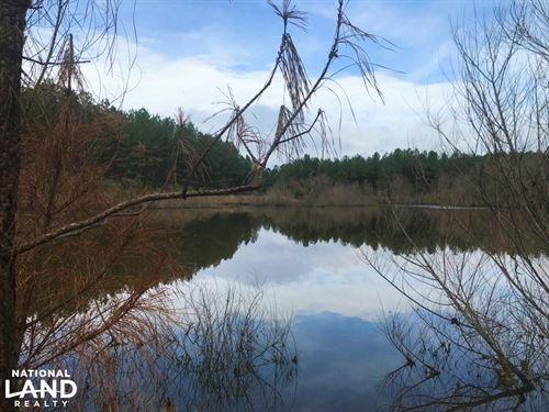 Timber, Hunting, And Recreational : Edgefield : South Carolina