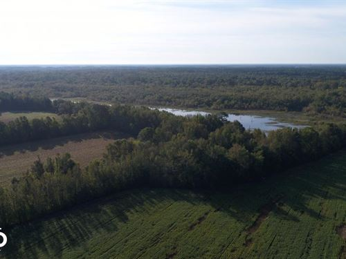 210 Hwy Archery/Waterfowl Hunting : Smithfield : Johnston County : North Carolina