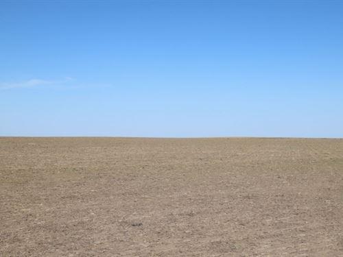 Multi-Seller Dryland & Crp Auct : Sedgwick : Colorado