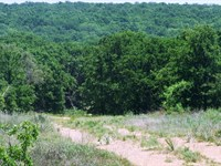 344+/- Acres In Scenic Eastland Cty : Cisco : Eastland County : Texas